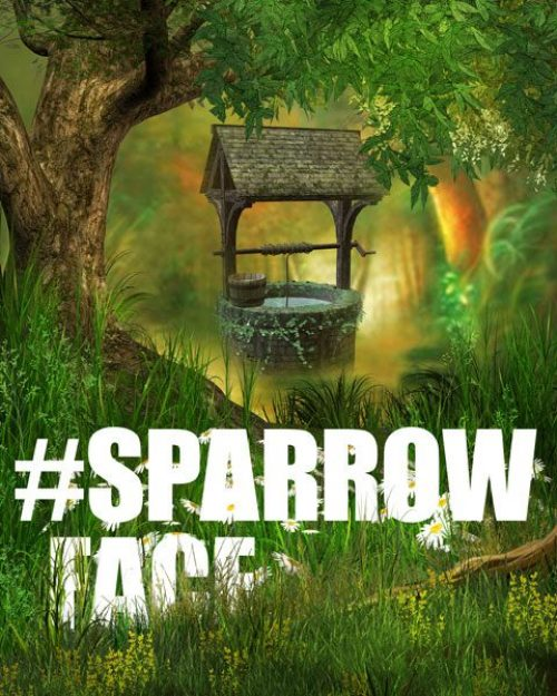 Sparrow Face (Digital C-type 10 x 8in/ 16 x 20in) 2016