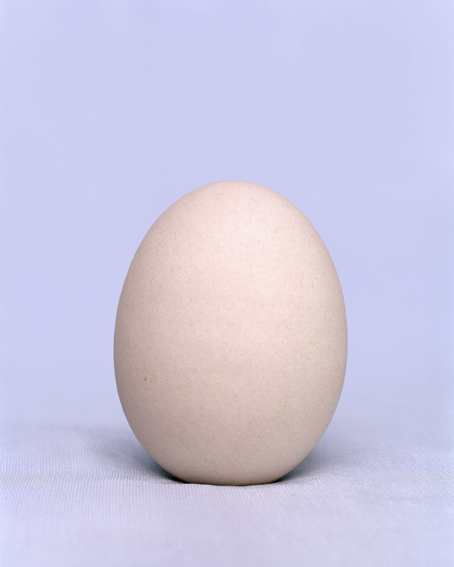 doz egg - 1
