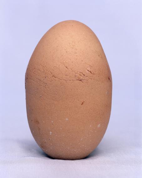 doz egg - 4
