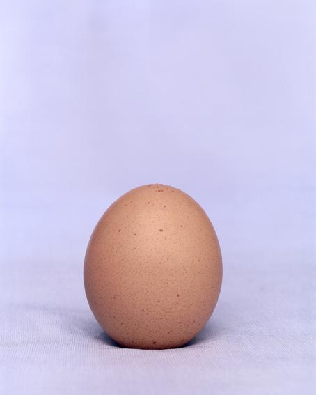doz egg - 5